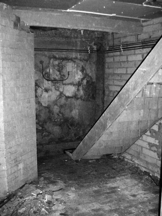 Wet basement with rotting wooden staircase