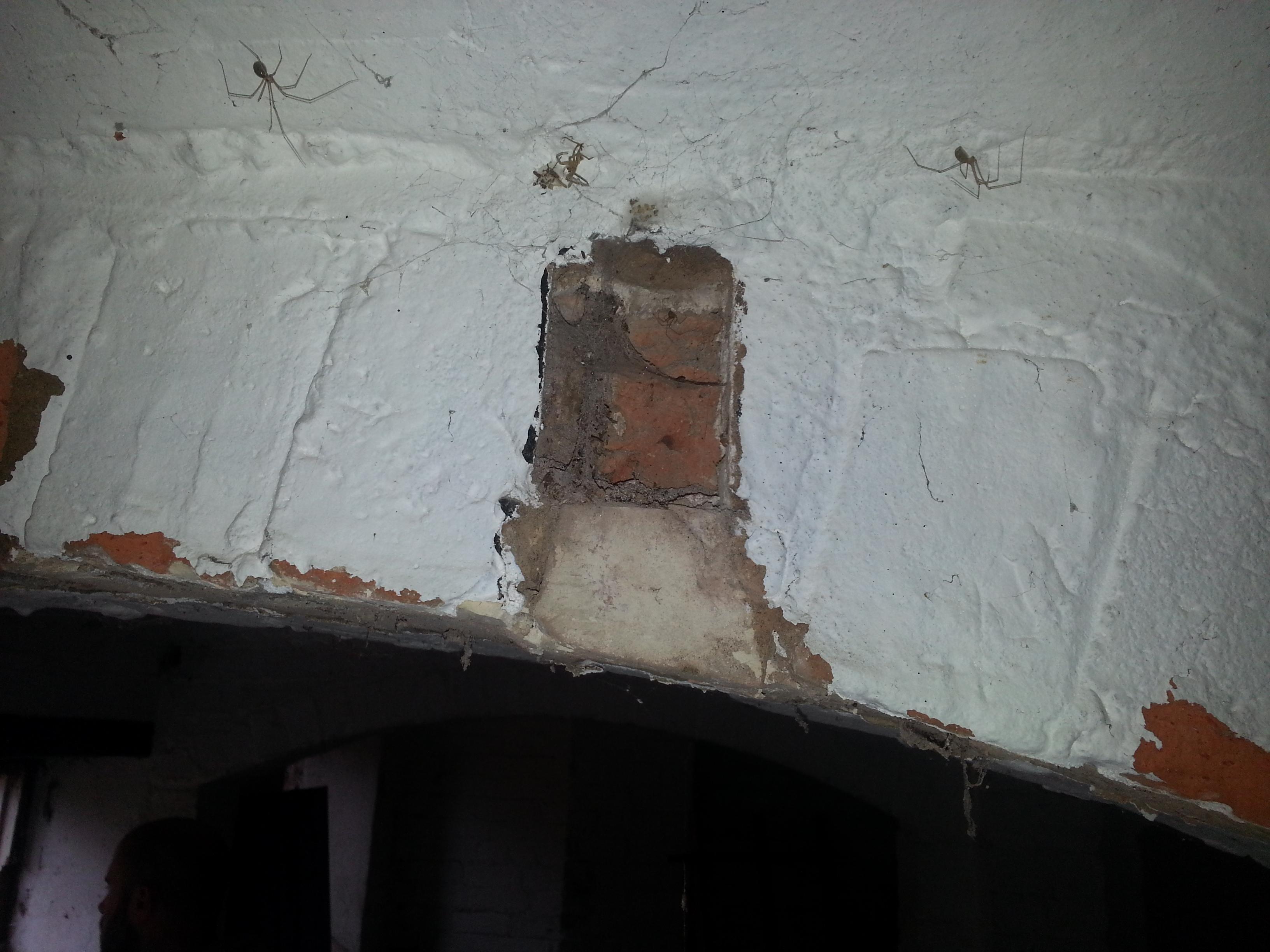 Ceiling arch repairs